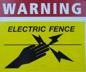 Boundaries in Relationships: Understanding Your Personal Electric Fence