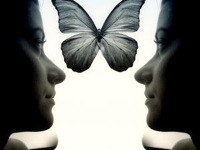 reflection of womans face with butterfly btween images