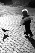 little boy chasing a pigeon