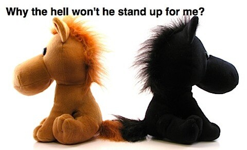 soft toys back to back with why won't he stand up for me?
