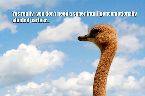 ostrich and emotional intellgence