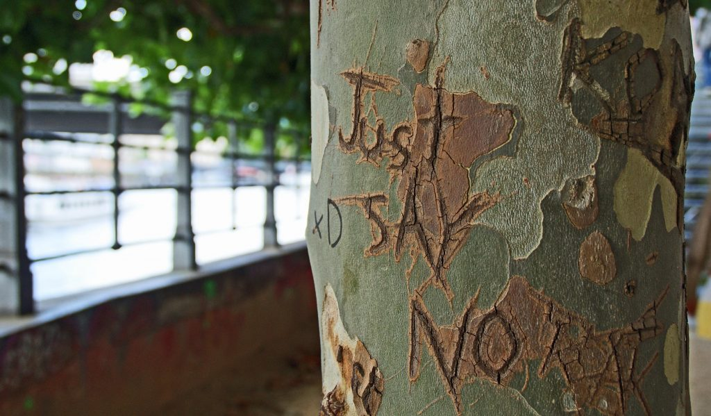 Tree with 'just say no' carved into it. Say no to harmful intentions. Photo by Andy Tootell on Unsplash