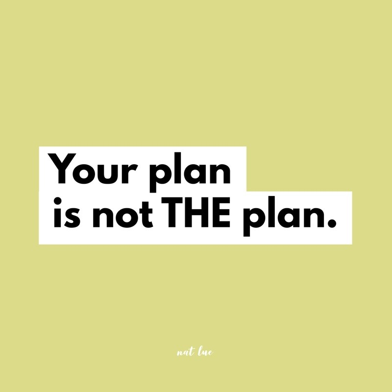 your plan is not THE plan nat lue